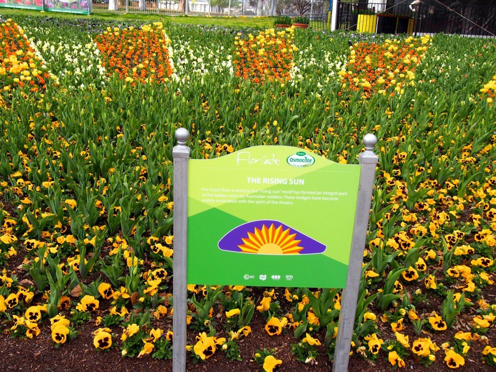 Garden bed with flowers set out like a sun, Sign in front reads 'Rising Sun'.