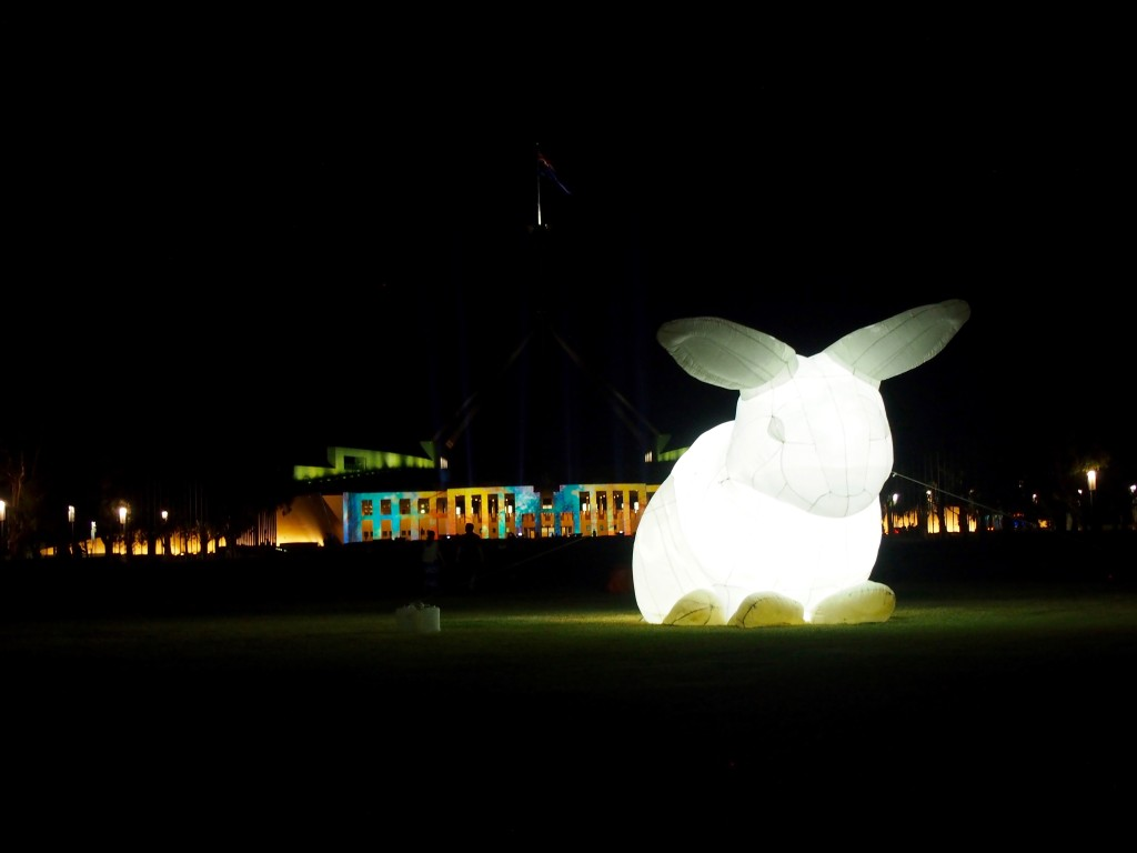 Enlighten 2016, projections at the Australian Parliament House - with rabbits, Canberra.